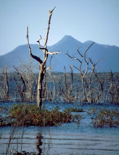Zimbabwe 051 - Great Zimbabwe