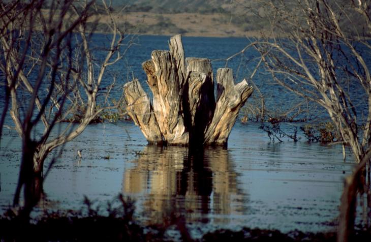 Zimbabwe 053 - Great Zimbabwe
