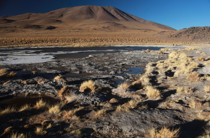 Bolivia - Itinerary Sur Lipez-Tupiza 054 / Laguna Colorada