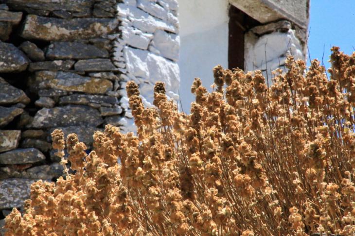 Greece - Amorgos - Hora 055