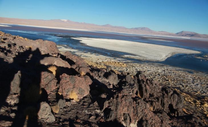 Bolivia - Itinerary Sur Lipez-Tupiza 056 / Laguna Colorada