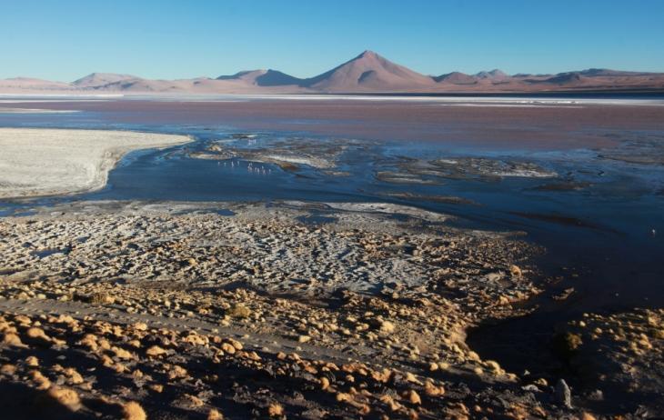 Bolivia - Itinerary Sur Lipez-Tupiza 057 / Laguna Colorada