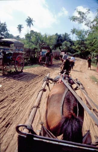 Myanmar - Mandalay 057 - Inwa