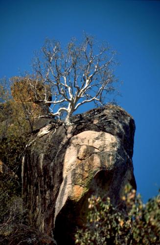 Zimbabwe - Matopos 057