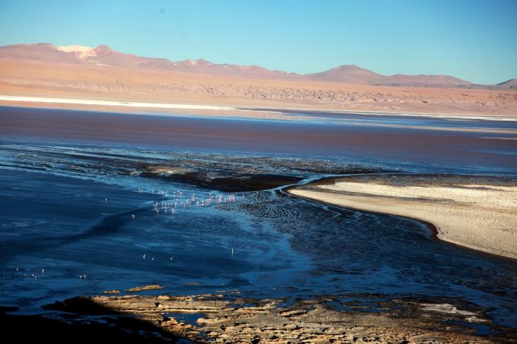 Bolivia - Itinerary Sur Lipez-Tupiza 059 / Laguna Colorada