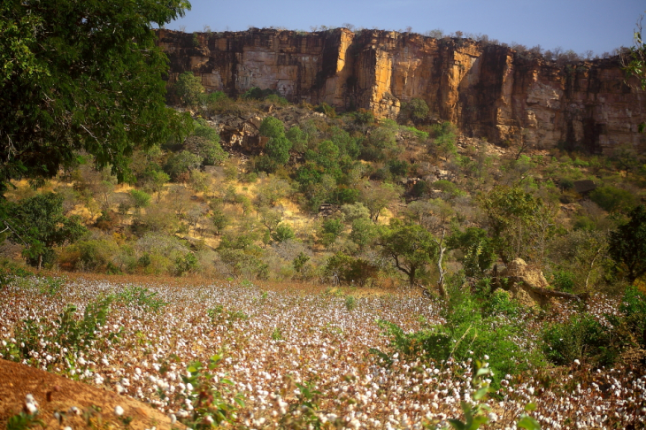 Burkina Faso - Falaise du Gobnangou 059