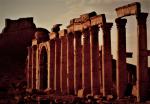 Syria - Palmyra 059