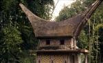 Indonesia - Sulawesi - Tanatoraja 064