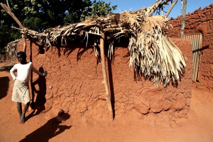 Burkina Faso - Koumi village, Bobo Dioulasso area 066