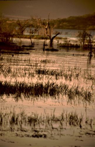 Zimbabwe 067 - Great Zimbabwe