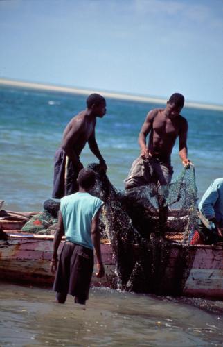 Mozambique - From Maputo to Vilanculos 068 - Vilanculos