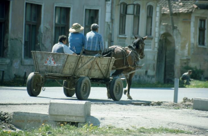 Romania - Bran area 070 - on the road to Rasnov