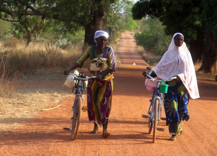 Burkina Faso 070 - On the road to Niasongoni
