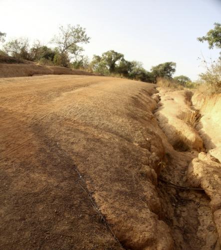 Burkina Faso 071 - On the road to Niasongoni