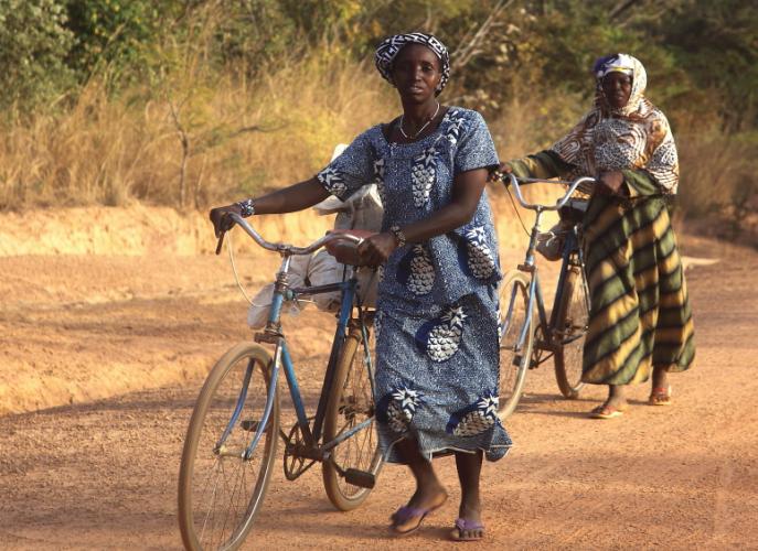 Burkina Faso 072 - On the road to Niasongoni