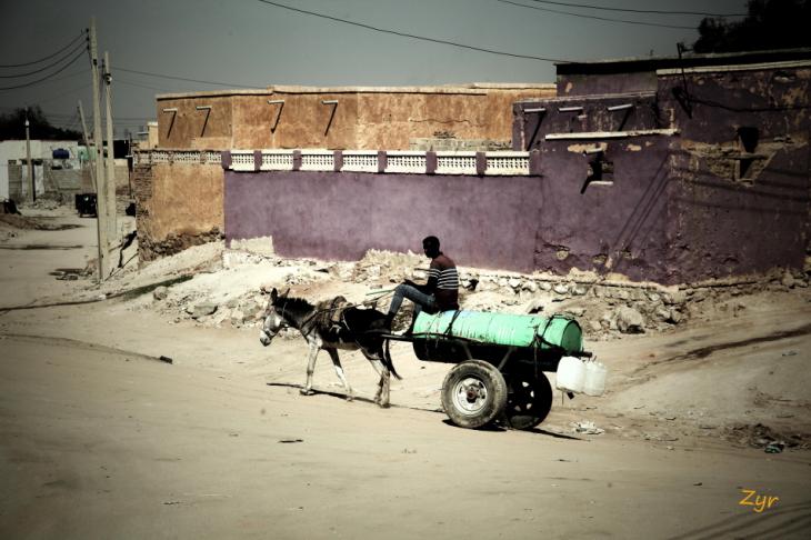 Sudan - Kassala 074 - Toteil