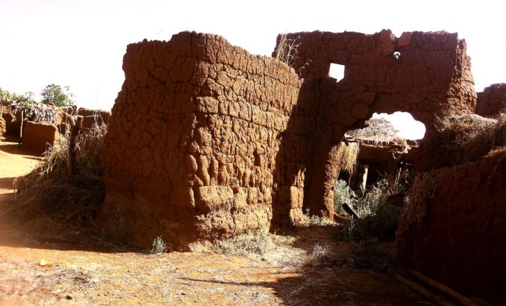 Burkina Faso - Koumi village, Bobo Dioulasso area 074