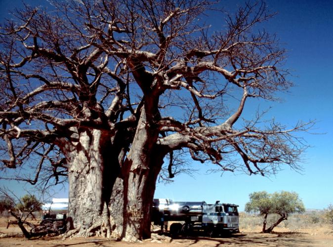 Zimbabwe 072 - Great Zimbabwe