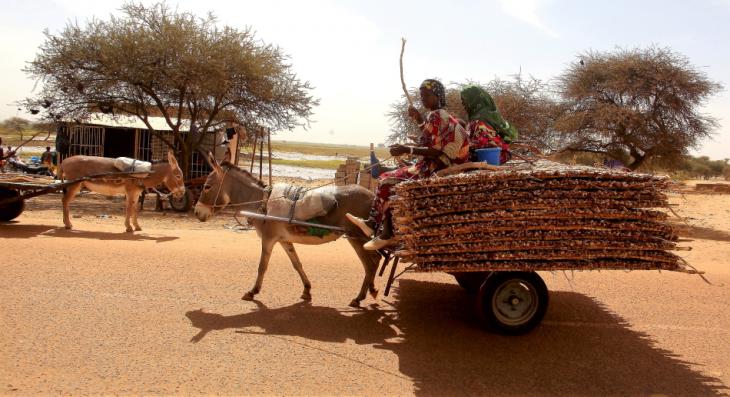 Burkina Faso 075 - On the road to Dori
