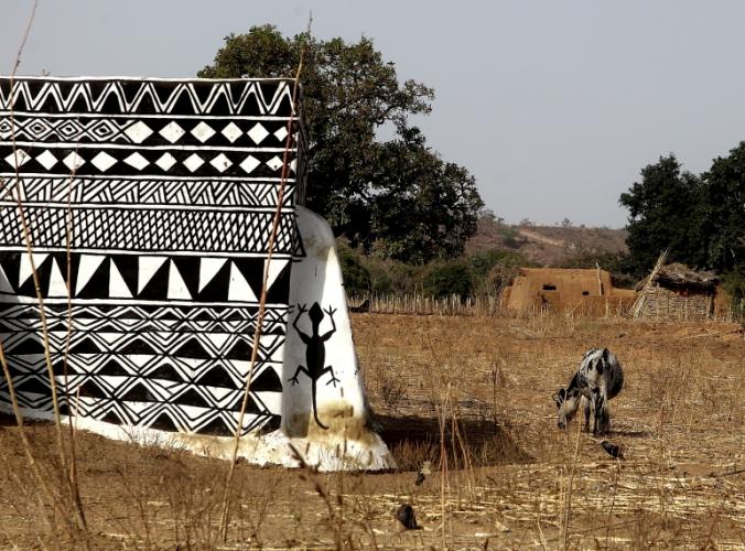Burkina Faso -Tiebele 075 - Village in the sourroundings