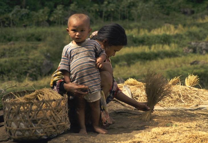 Indonesia - Sulawesi - Tanatoraja 076