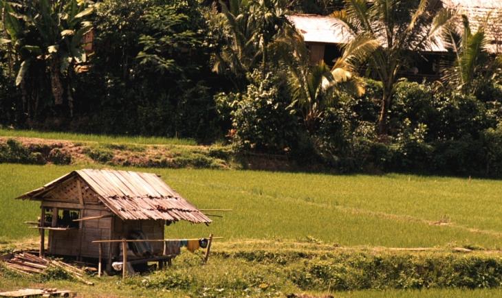 Indonesia - Sulawesi - Tanatoraja 077