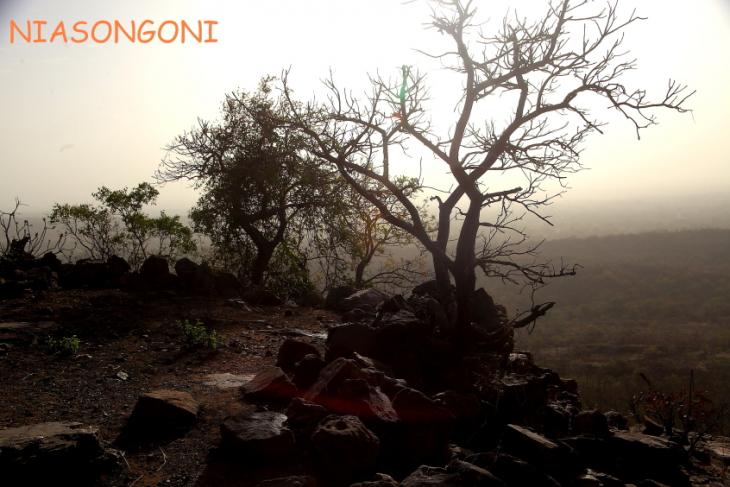 Burkina Faso 078 - Niasongoni