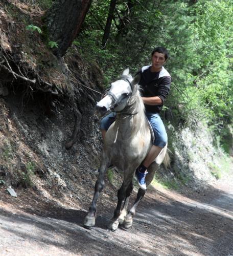 Georgia - Tusheti 083