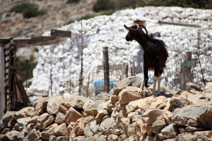 Greece - Astypalaia 083 - Vathy