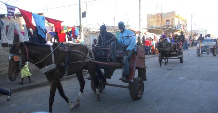 Senegal - Saint Louis 084