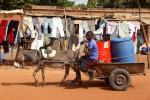 Burkina Faso -Tiebele 084