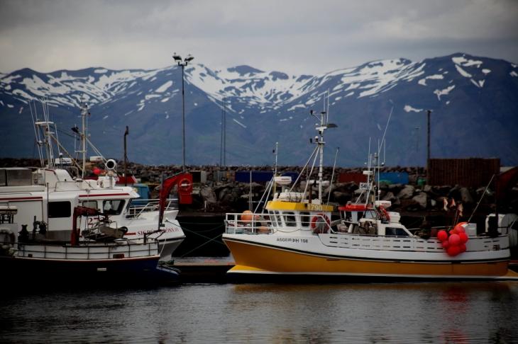 Iceland - North 88 - Husavik