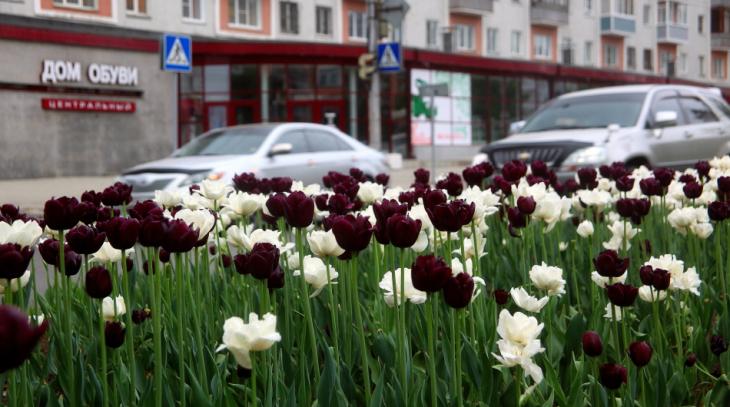 Russia 003 - Barnaul