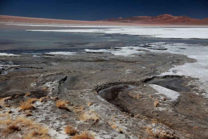 Bolivia - Itinerary Sur Lipez-Tupiza 090 / Laguna Blanca