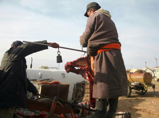 Mongolia 0952 - Gobi desert - Khongorin Els