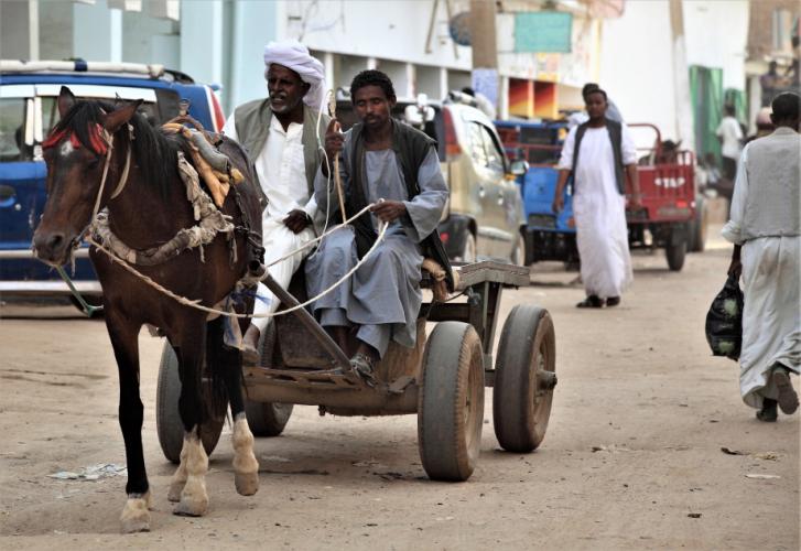 Sudan - Kassala 114