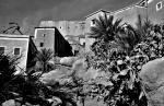 Morocco 122 - Tafraoute