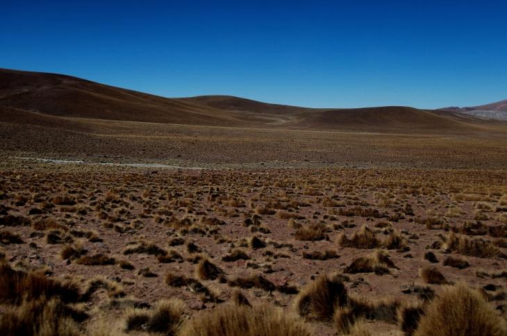 Bolivia - Itinerary Sur Lipez-Tupiza 124 / On the road to San Antonio