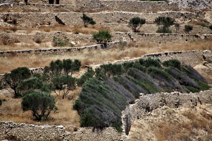 Greece - Folegandros - Chora 131