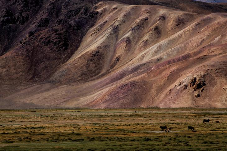 Tajikistan 137 - Bulunkul