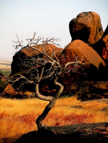 Burkina Faso 061 - Aribinda