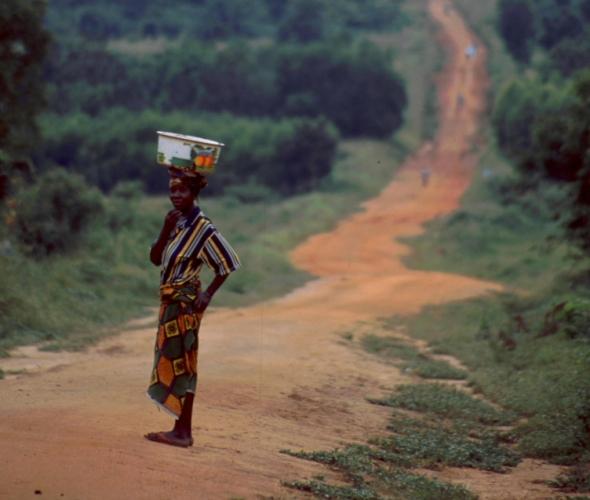 Benin - Lac Aheme 16