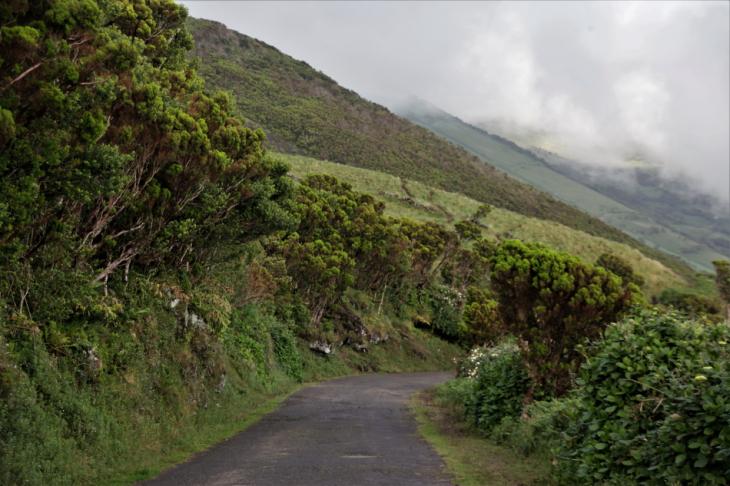 Portugal - Azores - Sao Jorge 196