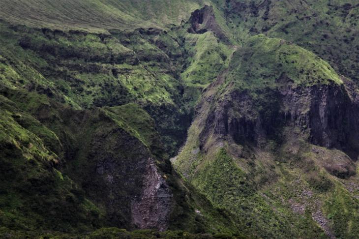 Portugal - Azores - Faial 203 - Caldeira