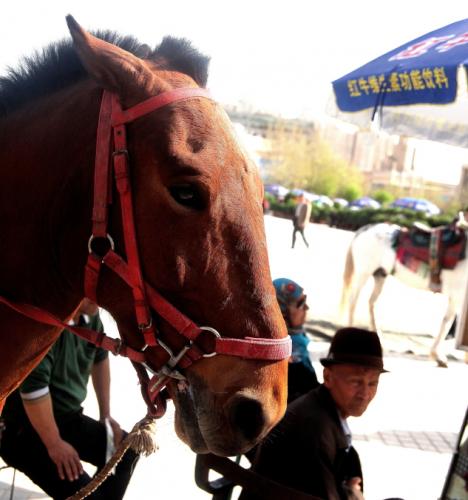 China - Xinjiang 207 - Kashgar