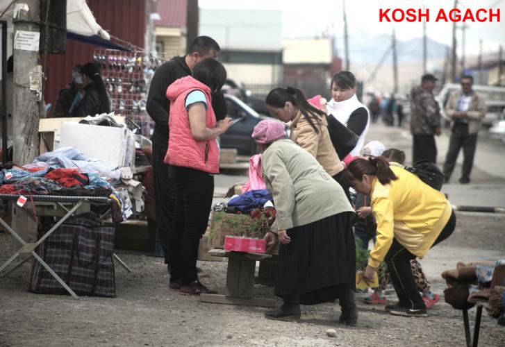 Russia - Altai 209 - Kosh Agach