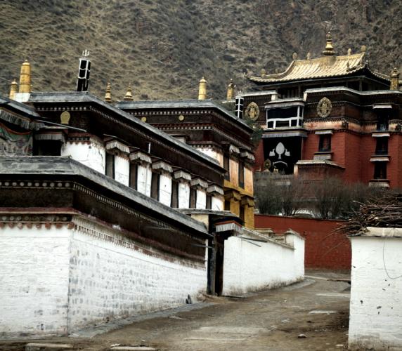 China - Gansu 220 - Labrang
