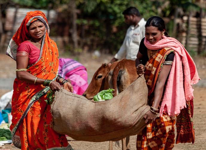 India - Odisha 221 - Ankadeli market