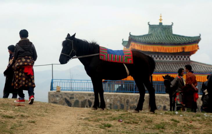 China - Gansu 290 - Xiahe area