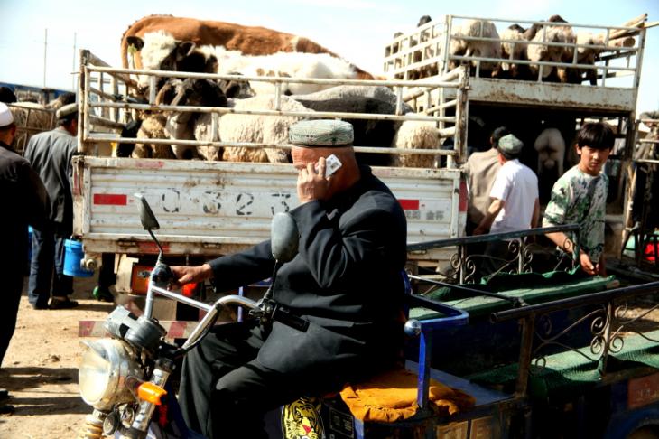 China - Xinjiang 296 - Kashgar - Sunday animal market